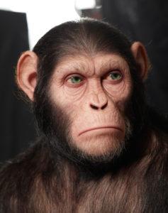 KazuhiroTsuji - Planet of the Apes